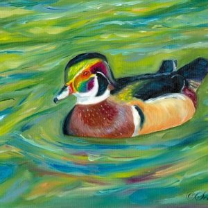 2016-02-013 Wood Duck Oil Painting