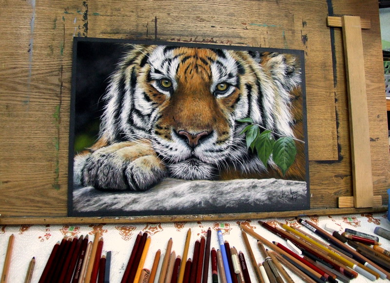 Painting Wildlife Use Of Reference Photos