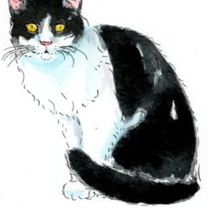 2018-06-046 Cat Watercolor ACEO Painting