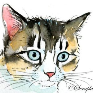 2018-06-102 Cat Watercolor ACEO Painting