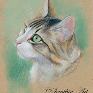 2018-10-221 Cat Pencil Drawing