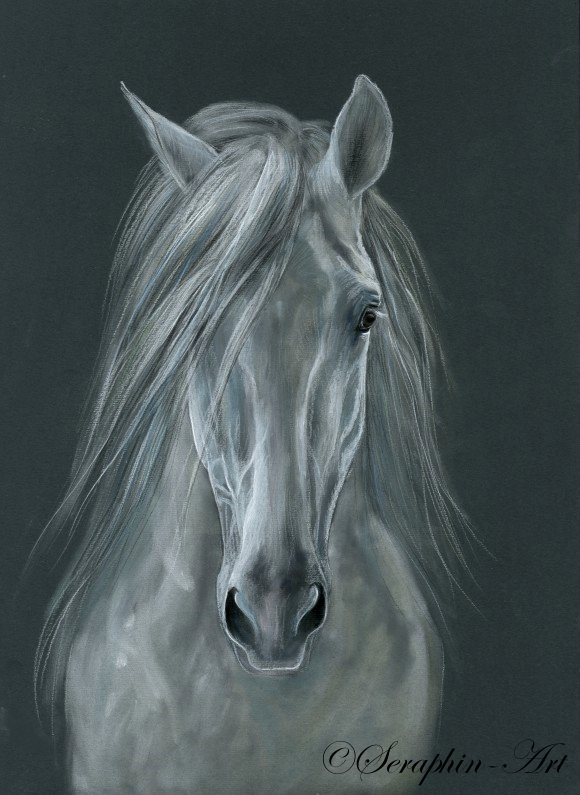 Three value tips to become an artist and paint wonderful horse artwork and one to save money