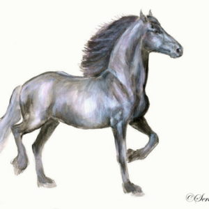 2008-10-035 Friesian Watercolor Painting
