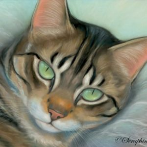 2014-09-009 Tabby Cat Pastel Painting