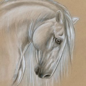 2019-05-038 PRE Horse Pencil Painting