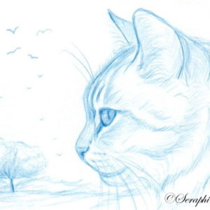 2019-06-003 Kitten ACEO Pencil Drawing