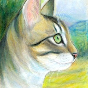 2019-06-039 Tabby Cat ACEO Pencil Painting