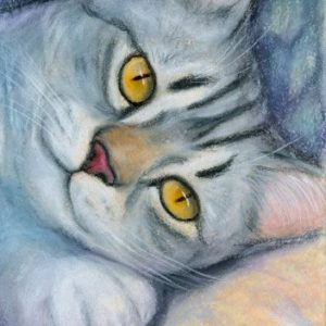 2019-06-054 Tabby Cat ACEO Pencil Painting
