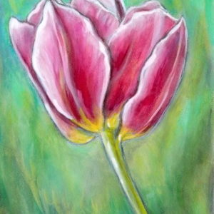 2019-06-059 Tulip Pencil ACEO Painting
