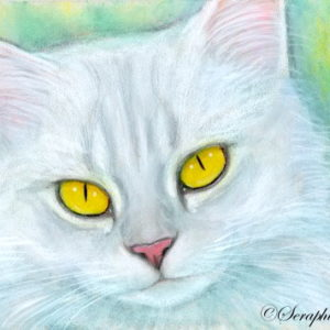 2019-07-004 Silver Chinchilla ACEO Pencil Painting