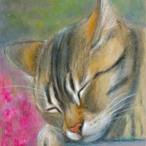2019-07-025 Tabby Cat ACEO Painting