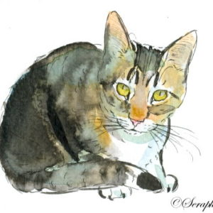 2019-08-035 Cat Watercolor ACEO Painting
