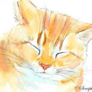 2019-08-061 Cat Watercolor ACEO Painting