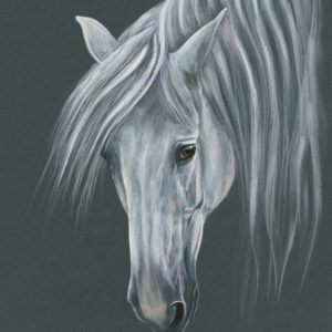 2019-09-206 Andalusian PRE Stallion Painting