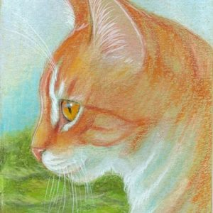 2019-10-005 Cat ACEO Pencil Painting