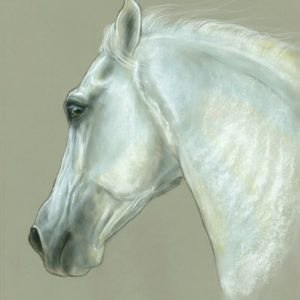 2020-12-201 PRE Stallion Pastel Painting